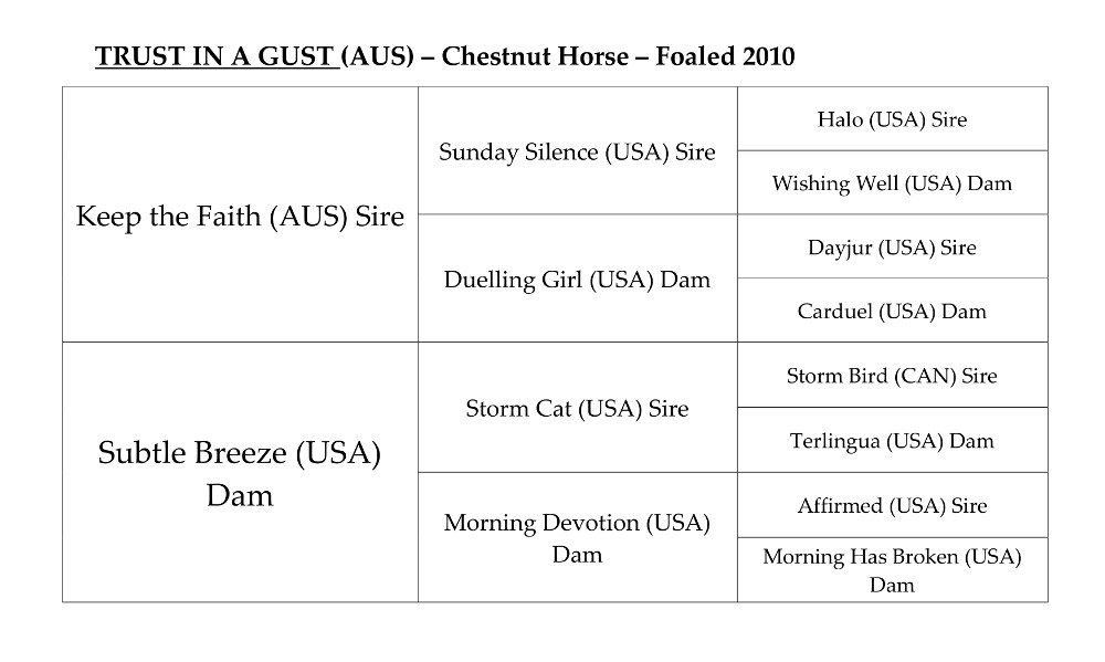 The stallion Trust In A Gust pedigree chart